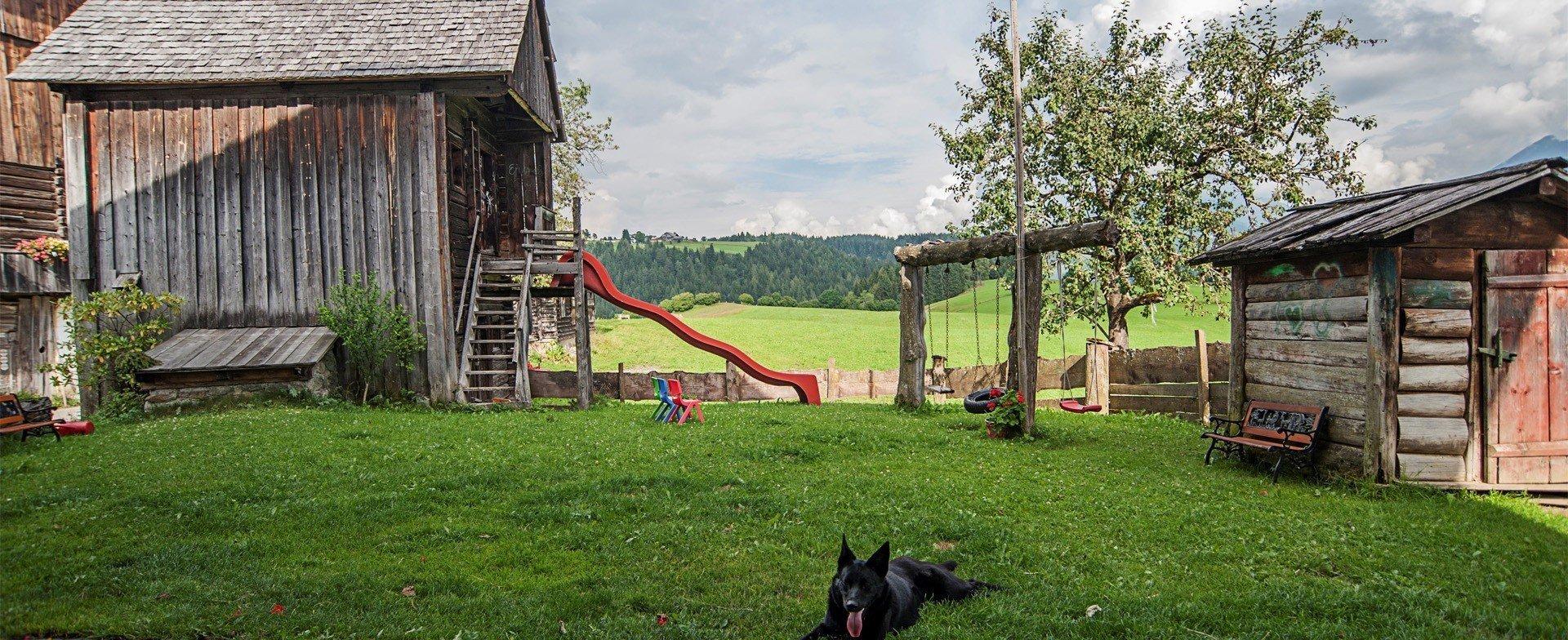 Spiel, Spaß und tierisches Vergnügen am Stoanerhof